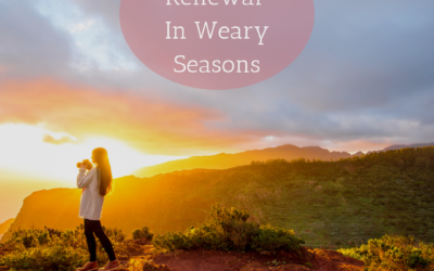 Finding Renewal In Weary Seasons