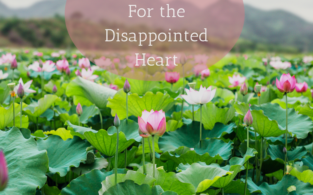3 Steps to Reclaim Hope For the Disappointed Heart